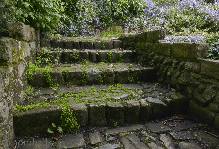 Steps in English Garden, Greenwich, England